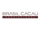 Brazil Cacau